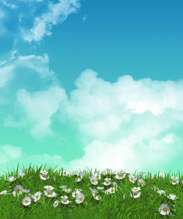 summer sky: 3D render of daisies in grass against a cloudy sky