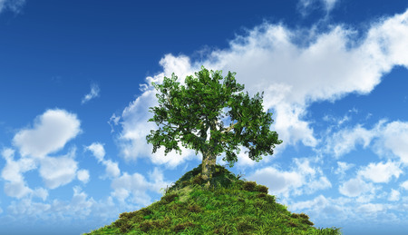 skies: 3D render of a tree on a hill with a blue sky background with fluffy white clouds