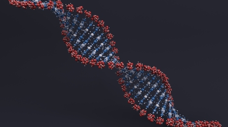 genetic information: 3D Render of a DNA Helix Stock Photo