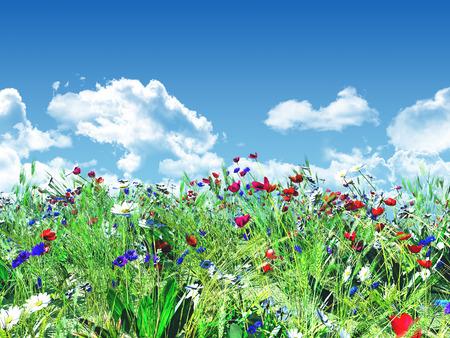 青い空を背景の野生の花の 3 D レンダリングします。