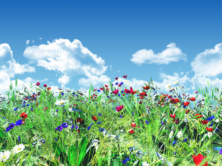 3D render of wild flowers against a blue sky