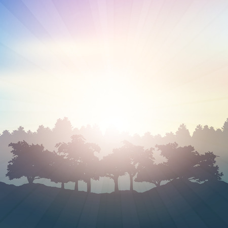 trees seasonal: Silhouette of trees in the countryside Stock Photo