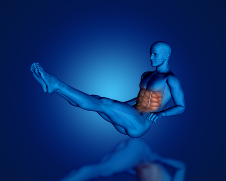 oblique: 3D render of a blue medical figure in sit up position with partial muscle map