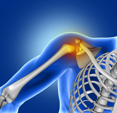 clavicle: 3D render of a blue medical image of close up of shoulder bone Stock Photo