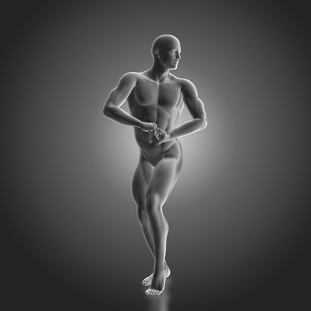 torso: 3D render of a male bodybuilder figure
