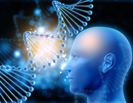 dna strands: 3D medical background with DNA strands and male head Stock Photo