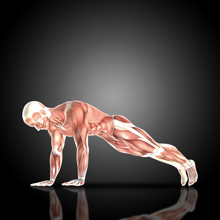 abdominal exercise: 3D render of a medical figure bodybuilder with muscle map in a press up pose with arms straight Stock Photo