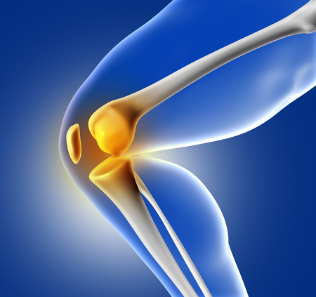 3D übertragen Von Einem Nahaufnahme Von Knie Knochen Lizenzfreie ...