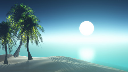 sundown: 3D render of a tropical landscape with palm trees