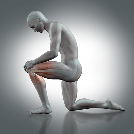 naked male body: 3D render of a male medical figure holding knee with partial muscle map Stock Photo