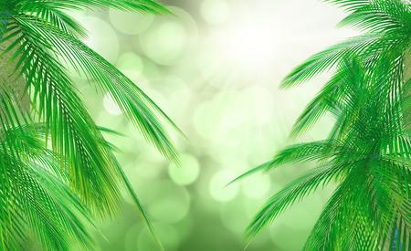 defocussed: 3D render of palm tree leaves against a defocussed background