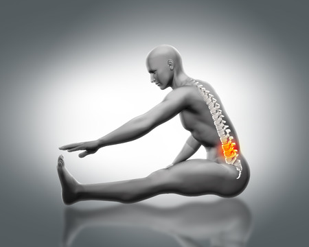 naked male body: 3D male medical figure with partial skeleton and spine highlighted in stretching pose