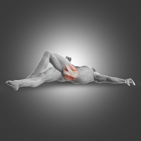 erector: 3D render of a male figure in a supine deep external rotator stretch position