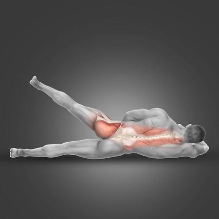 tensor: 3D render of a male figure in side lying hip abduction pose with muscles used highlighted