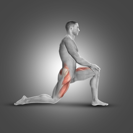 hamstring: 3D render of a male figure in kneeling iliopsoas stretch highlighting muscles used Stock Photo