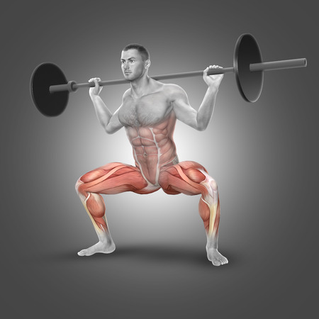 hamstring: 3D render of a male figure in barbell plie squat pose with muscles used highlighted