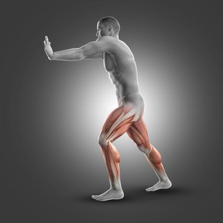 flexion: 3D render of a male figure in standing gastroc-nemius stretch