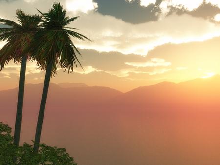 sundown: 3D render of a palm tree landscape