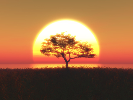 sunrise ocean: 3D render of a tree against a sunset sky Stock Photo