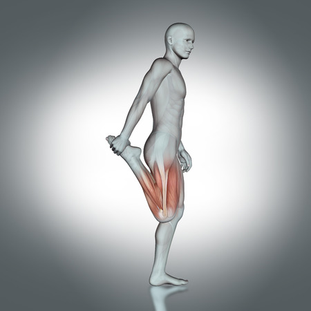 partial: 3D render of a male medical figure with partial muscle map in leg stretch pose