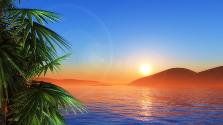 sunset beach: 3D render of palm trees against a sunset sea