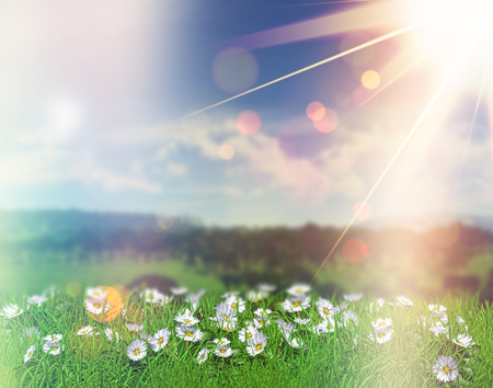 grass and sky: 3D render of daisies in grass against a defocussed background with bokeh lights