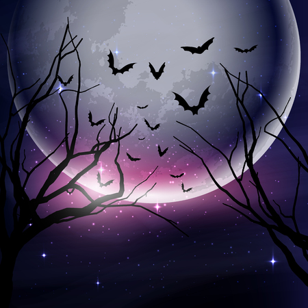 tree silhouettes: Halloween night sky background with tree silhouettes against the moon