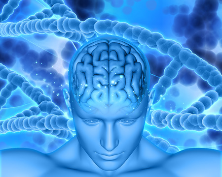dna strands: 3D render of a medical background with male head showing brain with DNA strands