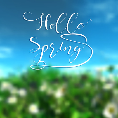 defocussed: Defocussed landscape image with the words Hello Spring Stock Photo