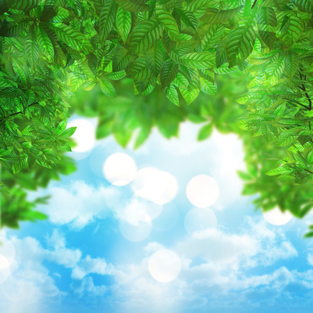 defocussed: 3D render of green leaves on a blue sky background
