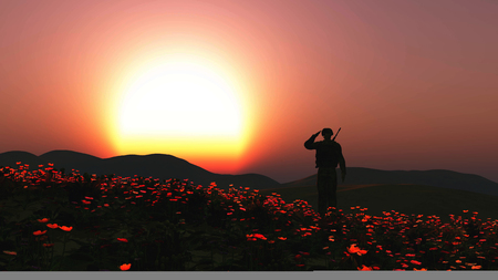 3D render of a soldier saluting in a field of poppies Foto de archivo
