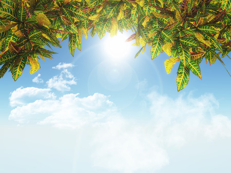 defocussed: 3D render of leaves on a blue sky background Stock Photo