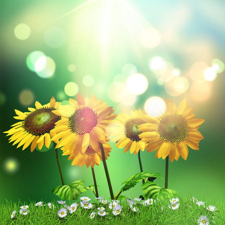3D render of sunflowers and daisies background