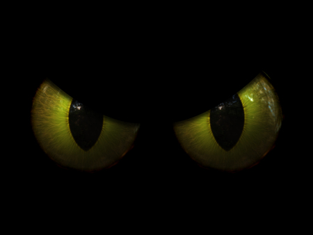 3D render of a Halloween background with evil eyes