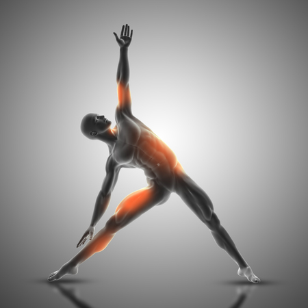 3D render of a male figure in triangle pose with muscles used highlighted