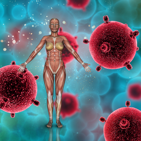 3D render of a female medical figure with muscle map on a virus cells background Stock Photo
