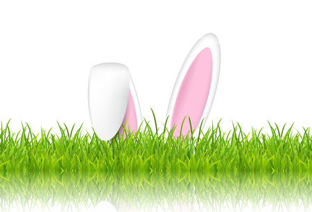Easter bunny ears in grass on a white background Stock Photo