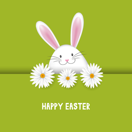 Easter background with cute bunny and daisies Stock Photo