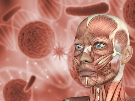 3D render of a medical background female face with muscle map on virus cells