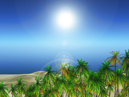 3D render of a palm tree landscape against ocean Stock Photo