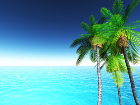 3D render of a tropical landscape with palm trees and blue ocean