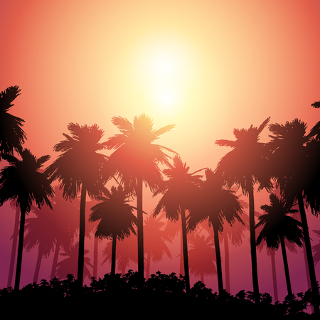 Silhouette of a palm tree landscape against sunset sky