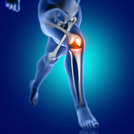 3D render of a male medical figure running with knee bone highlighted 版權商用圖片