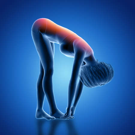3D render of a female figure in bent over position with back highlighted Foto de archivo