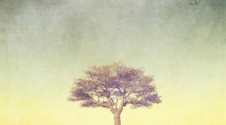 3D render of a grunge style banner with tree on pastel sky