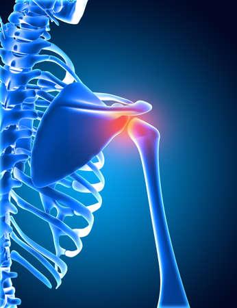 3D render of a medical background of a skeleton with shoulder bone highlighted