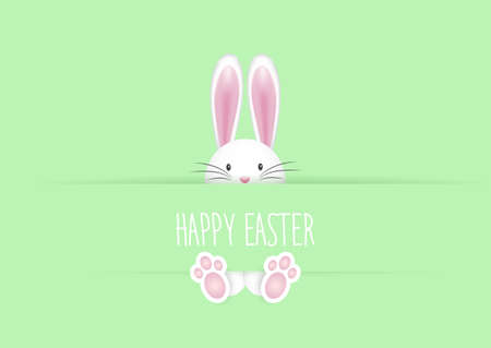 Cute Easter background with bunny rabbit 向量圖像