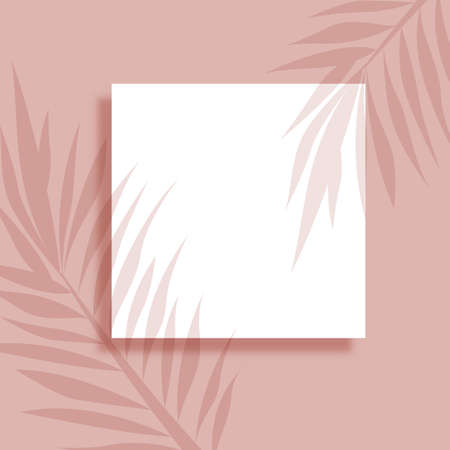 Abstract background with blank picture and plant leaves shadow overlay 向量圖像