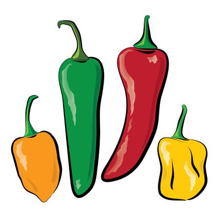 chiles picantes: Ilustración de cuatro chiles