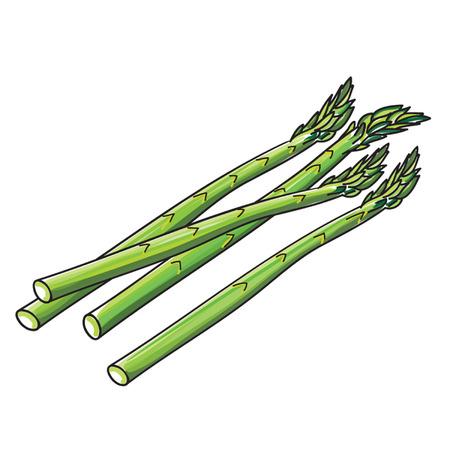 Asparagus spears Çizim